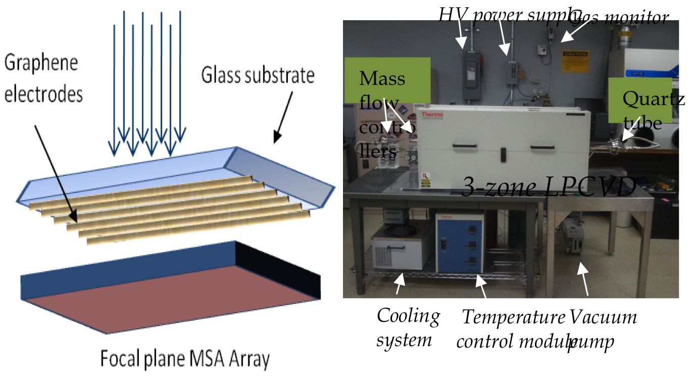 Graphene Transparent Conductive Electrodes