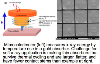 Soft X-ray Absorbers Enabling Study of the Diffuse X-ray Background